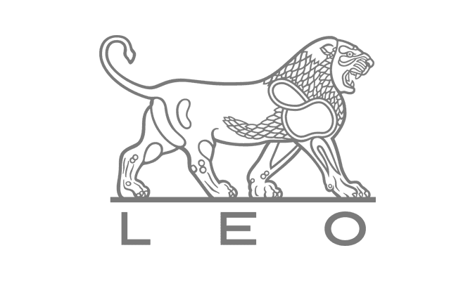LEO deltager på Proceslederuddannelsen